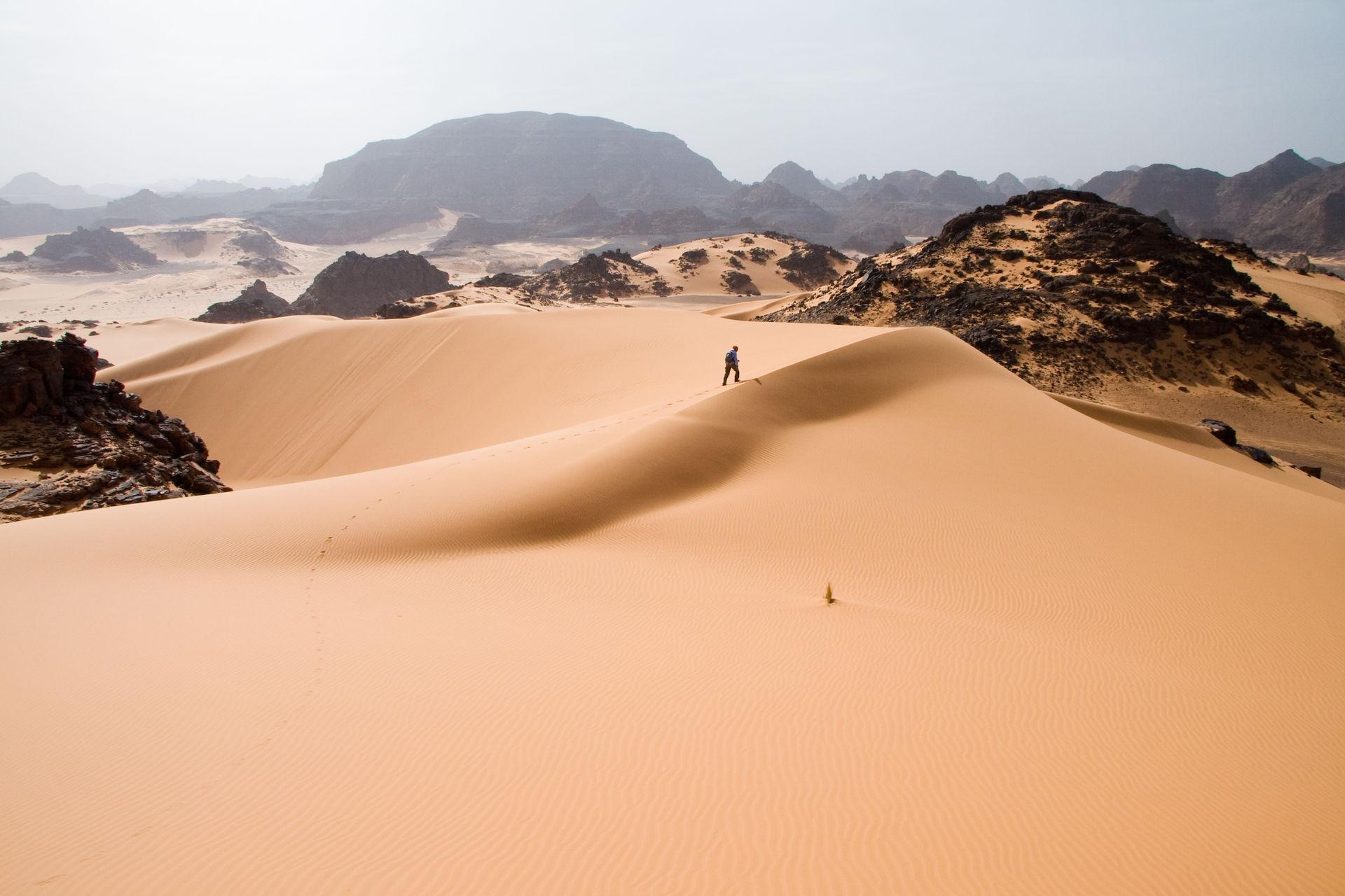 過去40年で3度目~あの砂漠に雪が積もった!?