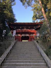 日本平からの東照宮