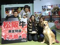 『家庭犬しつけ王座決定戦 わんわん番付2017』の模様をお届け☆~Part 2~ 2017/10/28 18:49:02