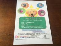 お知らせです☆くじら動物病院さんにて、『パピーパーティー』を開催します♪ 2017/08/20 18:02:36