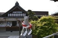 名古屋にある犬の神様の、伊奴(いぬ)神社へ初詣に行ってきました♪ 2018/01/12 12:57:15