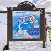スキーの動画