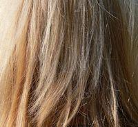 髪の細い方に