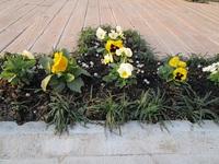 お庭の花壇