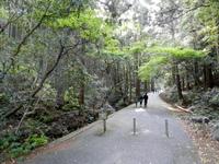 天の岩戸(三重県)に行ってきました。