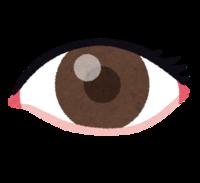 子供の視力を考える・愛知県