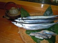 秋の旬・秋刀魚(さんま)のお鮨