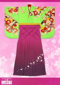 黄緑の袴用着物 & えんじグラデーション刺繍の袴 or紫刺繍入袴