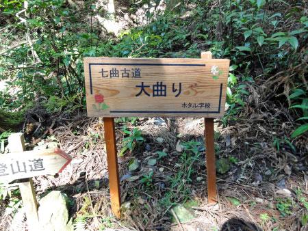 「鳥川ホタルの里の山歩きイベント」を開催しました!