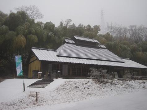 雪化粧の森