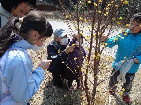 わんParkで「ミニミニお花見ハイキング」を開催しました!