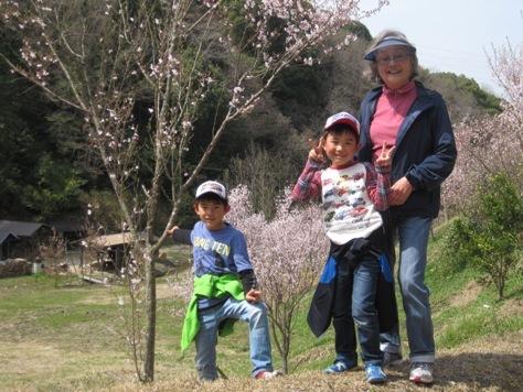 春の話題!記念植樹・ヤマザクラ・鯉のぼり