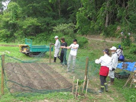 農業を体験しよう!「大豆の種まきと草絵作り」開催レポート