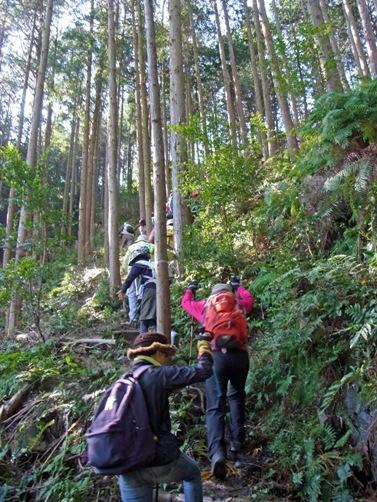 ホタルの里の山歩きイベントを開催!「愛宕山・京ヶ峯」コース