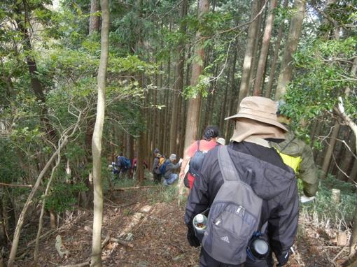 紅葉の「水晶山」トレッキング!開催レポート