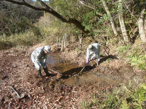 生物多様性を目指して!「カエル産卵用池」をつくりました!