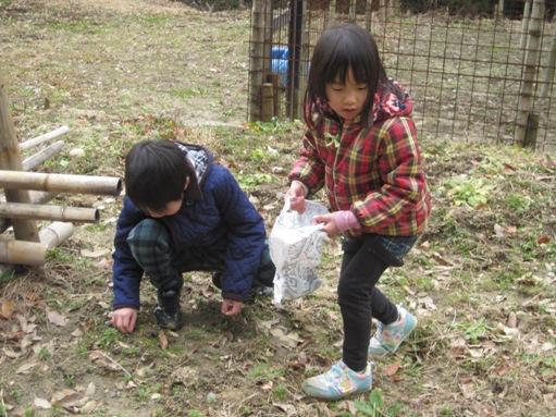 「春の七草を探しに行こう!」開催レポート