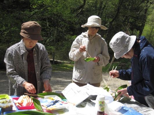 「食べられる植物を探そう!」開催レポート☆