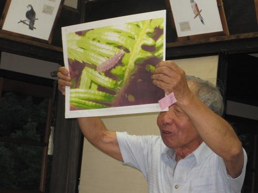 ホタル観察会「これで私もホタル博士!」開催レポート