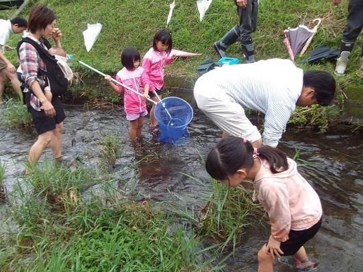 川の生き物からわかる環境の良し悪しとは?