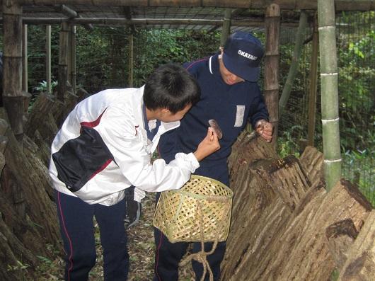 体験の森で職場体験!岡崎市立矢作北中学校2年生が来園