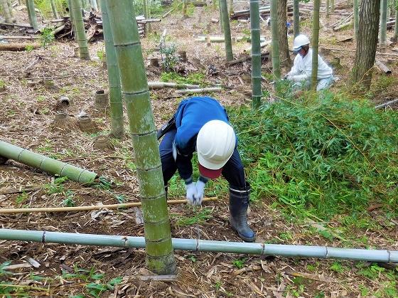 おかざき自然体験の森で職場体験学習!竜海中学校2年生