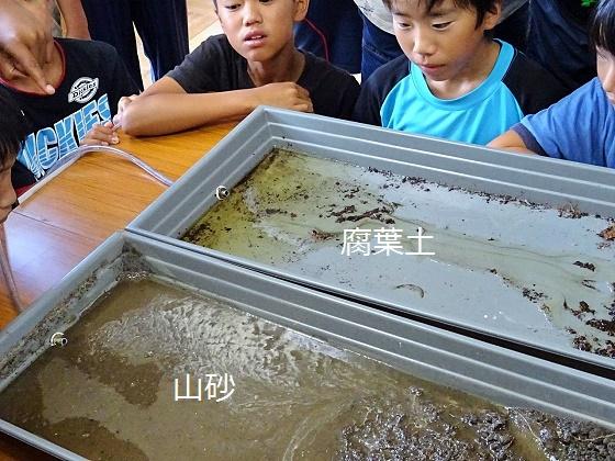 森・水・生き物のつながりを学ぶ!六ッ美中部小学校6年生がホタル学校に来校