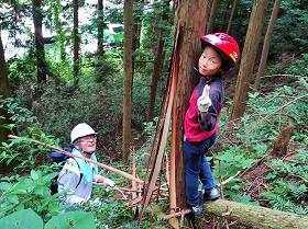 森を手入れしてホタルを守ろう!皮むき間伐体験を開催
