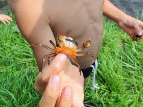 岡崎の水源を探る「夏休み!水道水源探訪親子バスツアー」を開催