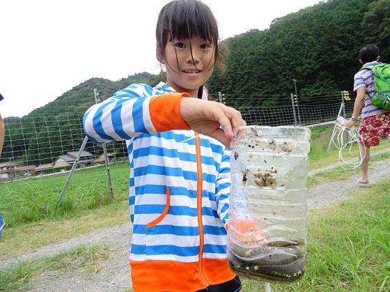 「ペットボトル」を使った罠で魚とりに挑戦!