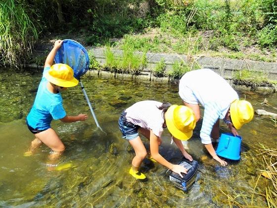 鳥川ホタルの里の環境を調べよう!美合小学校ホタル飼育部が来校