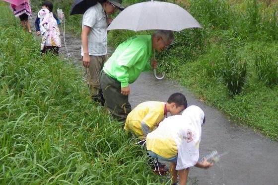 雨にもまけず!イオンチアーズクラブ環境教室
