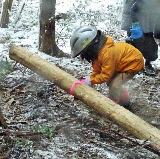雪の森で間伐!親子でワクワク森しごと体験