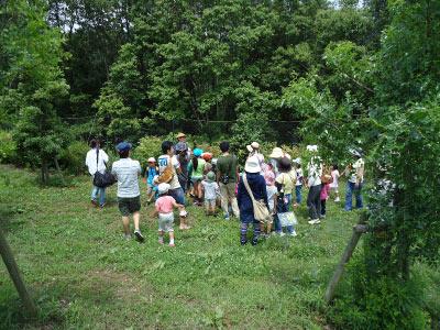 わんParkイベント「ノイチゴ摘みに行こう」を開催しました!