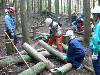岡崎きこり塾「森林(もり)づくり人材育成事業」のご案内