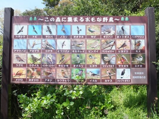 絶景!見晴らし「桑谷展望園地」で散策を!