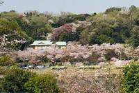「100年残したくなる家」への社長の想い 岡崎市自由設計スカイグラウンド