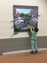 面白い!トリックアート!~中京競馬場へ潜入してみた~
