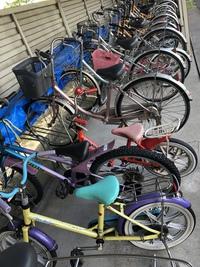 無料 自転車レンタル 〜親子で川沿いをサイクリング〜