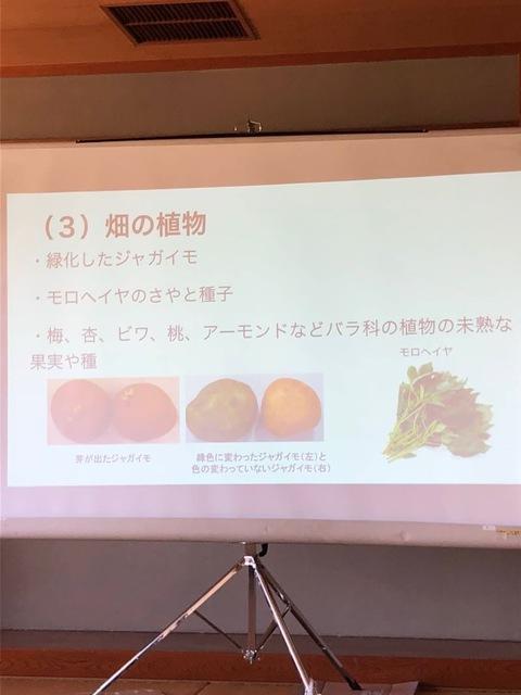 【危険生物 危険植物講座】を合同開催しました!