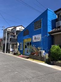 トランポリン!  ~名古屋市~