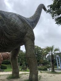 等身大?恐竜いっぱい。