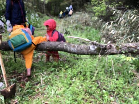 3才のMちゃん 丸木を越える!