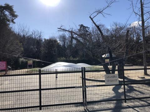 冬でも楽しい鞍ケ池公園   全天候型