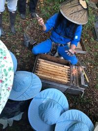 養蜂場へ 見学& ハチミツ試食