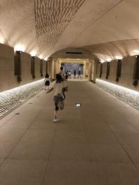 謎めいていて面白い! 「光ミュージアム」  高山市