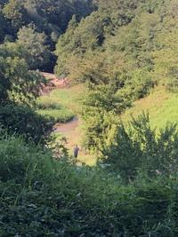 川の水が!あったかい〜王滝渓谷〜