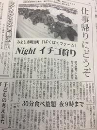 みよし市で「いちご狩り」ができる!しかもナイター営業!!!
