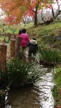 豊田市「ちごの口公園」散策