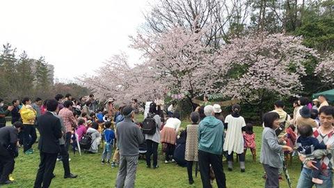 青空入園式は 桜色♪